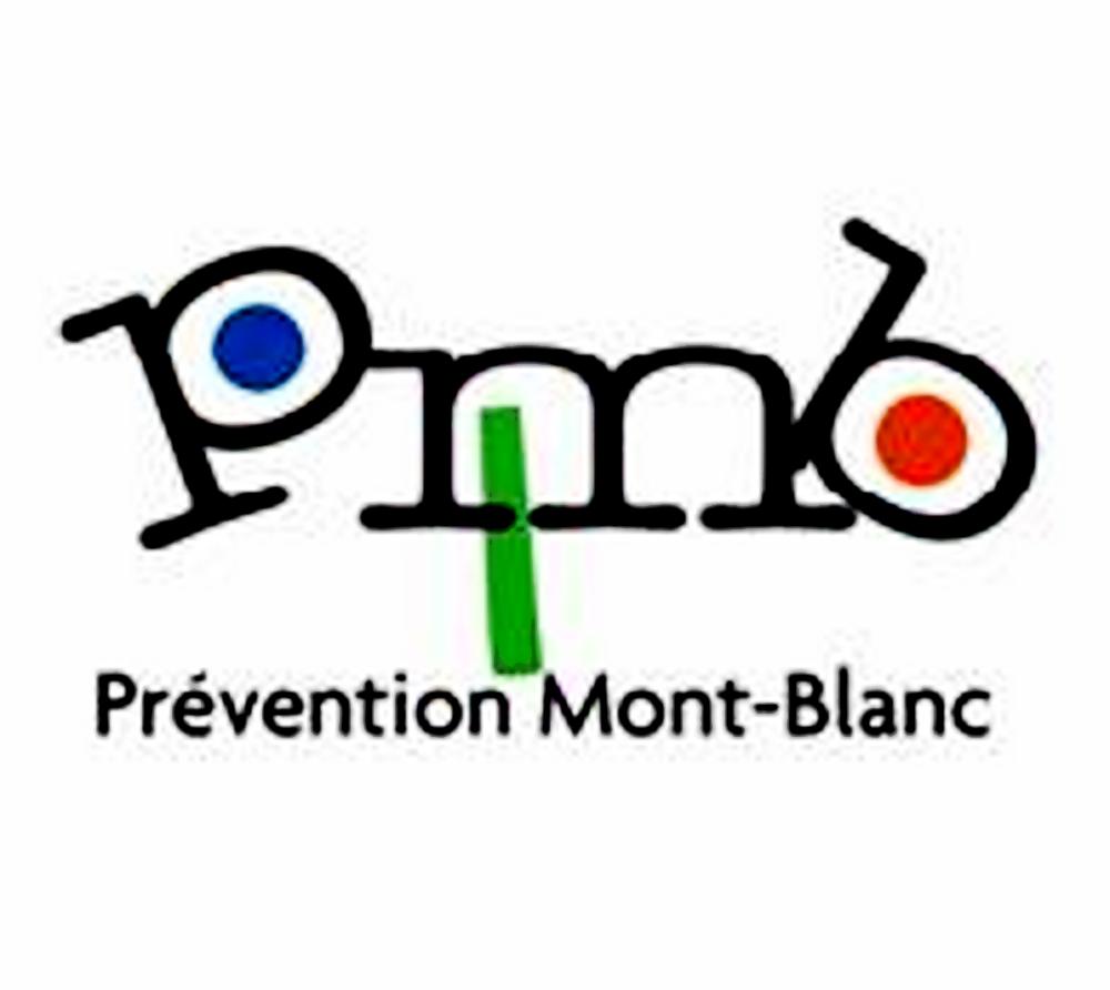 P.M.B., Une Histoire Commune De La Prévention Spécialisée En Haute-Savoie, Un Positionnement  Au Regard Des Enjeux à Moyen Terme